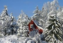 SNOW~ i miss you  !!!! That's crazy  / Crazy cold and wet ~ SNOW / by Nancy Busch