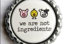 Vegetarian Food & Drinks / by Maureen du Long