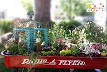 Green Thumb:Fairy Gardens / Clap your hands if you BELIEVE! Fairy garden how to, ideas, designs, tips & inspiration