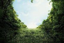 b e y o n d g r e e n / GREEN #GRASS