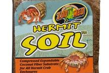 Hermit Crab Supplies / Zoo Med supplies all you need to get started keeping Hermit Crabs. / by Zoo Med Laboratories