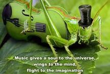 Music for my soul / My pin board of music for moments of calm, love and happiness, to inspire creativity and to just make me smile!  ..........   Music washes away from the soul the dust of everyday life. Berthold Auerbach