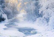 Winter Wonderland / by Christina Kelly