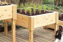 Great for Gardening / by ivgStores