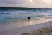 Isla Mujeres y Cancun