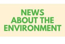 NEWS ABOUT THE ENVIRONMENT / The latest environment news and opinion articles from greener ideal.