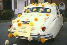 Fall Wedding / by Debra Hutchinson