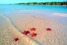 travel | caribbean / a curated travel inspiration board focusing on the caribbean