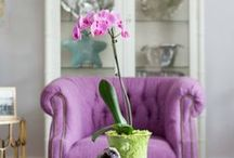 Home Tours / by Laura Trevey
