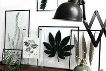 Décorations Tendances / Des idées déco inspirantes pour vous aidez à décorer votre nouvelle maison.