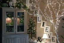 Winter Decor / Winter Decorating ideas, Winter Decor ideas / by Danielle Leonard - The Frugal Navy Wife