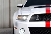 Mustangs Shelby / No price tags, pins that link to original sources, quality and highest resolution pins. Regester your car at mustangquest.com