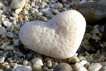 ~follow your heart~ / be true to your heart-and your life will be complete!
