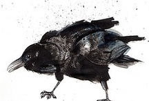Magpies & Crows / by Cathy Malchiodi | Art Therapy