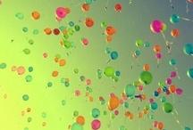 [ Shannon's Birthday ]