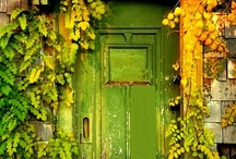 Color | Green