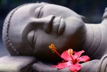 I Love Buddha's & Other Spirital Statues, sculptures & carvings / I love Buddha's & Other Spiritual Statues, sculptures & carvings because they make me smile & give me a sense of  serenity, happiness & love! / by Chris Clarke