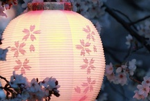 Candles, Lanterns, lightshades & lamps / Lanterns, lightshades & lamps come in many forms...simple plain glass with a candle inside, intricate cutwork, pretty handpainted paper, fabric, elaborate shapes...they can be simply functional & they can add lovely atmosphere to a setting! / by Chris Clarke
