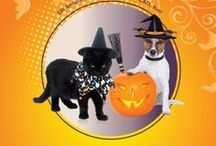 Halloween / Get ready for Halloween!