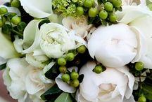 Flowers & bouquets / by Krystel Nassif