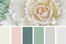 COLORS / by Tasya {My House and Home}