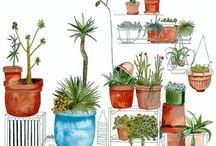 Gardening / by Brandy Labranche