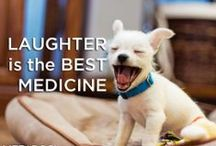 Laughter Is The Best Medicine / by Wendy Galloway