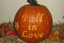 """Fall"" in Love / by Wendy Galloway"