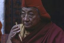 Dilgo Khyentse Rinpoche / Quotes from Dilgo Khyentse Rinpoche.