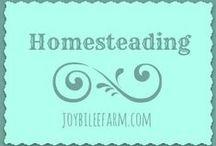 Homesteading / Homesteading, DiY simple living. / by Joybilee Farm