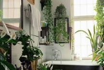 Home - Bathroom Spa Oasis