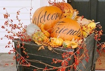 It's FALL y'all / by Diane Vincent