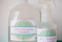 Clean all the things! / by Amber Gravley