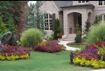 Curb appeal / by Shelley Cook