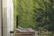 green ROOFS vertical GARDENS earth HOUSES