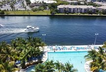 Our Infinity-Edge Pool / Our zero-depth entry, infinity edge pool overlooks the intracoastal waterway. Enjoy the view of the yachts going by and the dolphins.
