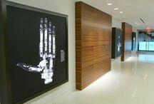 Clinic Interiors / by Brooke Petersons