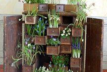 [Garden * Ideas] / by Ashley Sierra