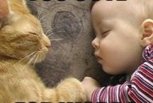 So cute! / by Isa Powers