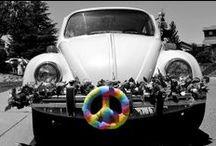 slug bugs... / by Nora Gholson