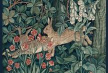 Hare / by Diana Thorold