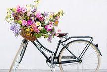FLORALS / flowers, florals, floral arrangements, parties, wedding, etc.