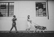 animals at weddings / Inspiration for my wedding clients  www.riverandfern.com.au