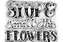 Art: Hand Lettering / Tips for learning the art of hand lettering for Bible Journaling