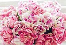 Flower Power / Jouer Cosmetics' Floral Inspiration Board / by Jouer Cosmetics