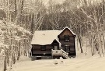 Cabin Fever / by Jackie Mcfaull