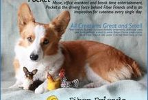 Corgis and Dogs / by Fiber Friends | Pocket Pause