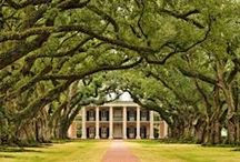 """The South / Ever since I saw the movie Gone with the Wind, I have been entranced by the Southern lifestyle.  I even named my daughter Tara for the plantation house in the movie.  """"Yes, dear, you are named after a house.""""All those parties and barbecues, the food, the hats, the gowns!  And now we have The Help which just sparked my interest once again in those Southern belles. / by Candy Buria"""