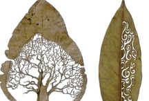  Duurzaam-eco- change the world inspiration    / . / by Marian Kouw