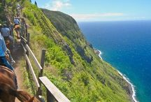 Out and about on Molokai / Sharing the aloha of Molokai